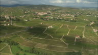WS Aerial view of Vineyards, Beaujolais, Rhone-Alpes, France