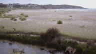 4K Aerial view of wild kangaroos, ducks, river and beach, at Merry Beach, Kioloa, New South Wales, Australia