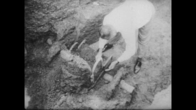 Aerial view of worker in archeological dig / worker brushes dirt from remains of a bronze war chariot / colleagues watch from above