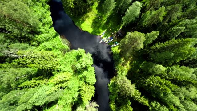 Luchtfoto uitzicht op bos en rivier