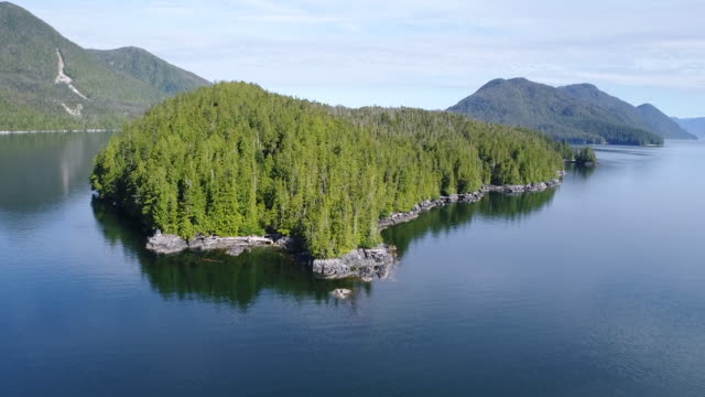 Aerial View over an forested island in the Great Bear Rainforest