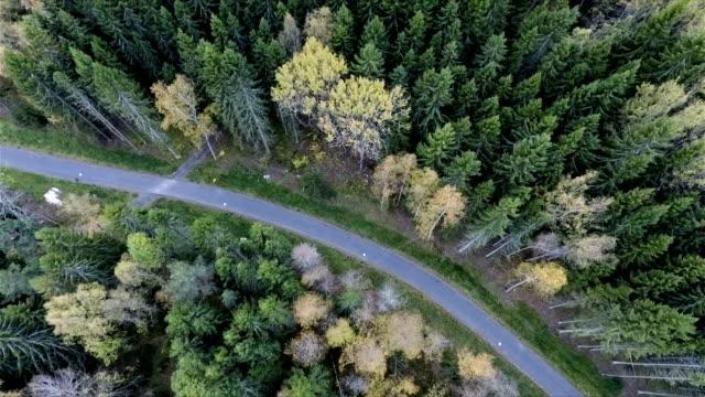 Luchtfoto uitzicht over bos