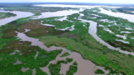 Aerial View over Swampy wetlands of Twisted and Turning Rivers and Streams and Wet system flowing into the Gulf of Mexico