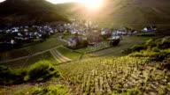 Aerial Vineyards Countryside