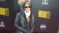 Aerosmith's Joe Perry Collapses On Stage Getty Images News Flash