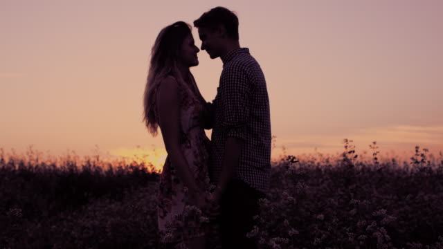Affectionate couple kissing in the field at sunset