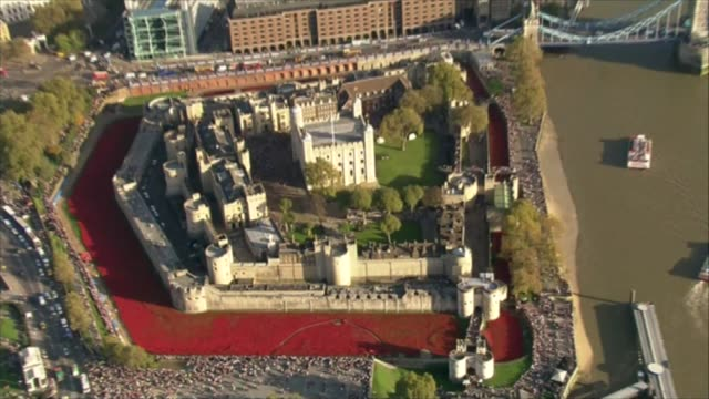 Afghan war photographs projected onto Tower of London as part of housing campaign CUTAWAYS Sea of ceramic poppies in the moat of the Tower of London
