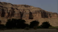 African Acacias grow at the foot of a rock formation. Available in HD.