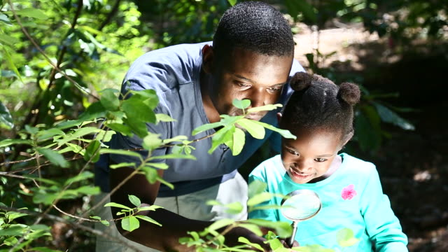 African father and daughter exploring the nature
