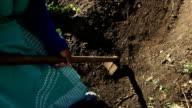 MS African female farmer tilling soil, KwaZulu Natal, South Africa