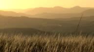 Afrikanischer Gras savannah und mountain Lagen Sonnenuntergang