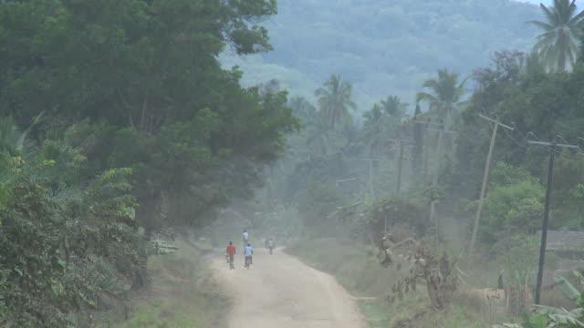 Afrikanischen Dschungel road