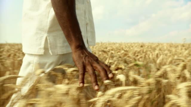 HD SLOW-MOTION: African Man Touching Wheat