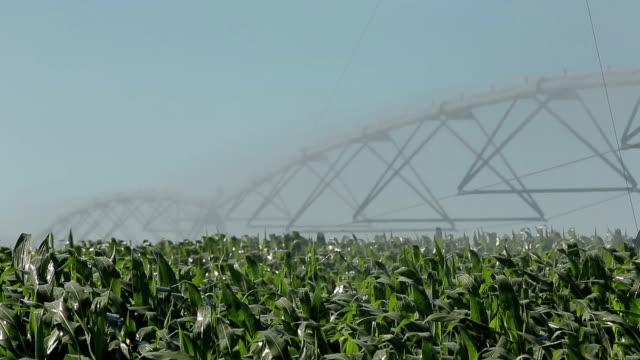 Agricultura rega boerderij sprinkler