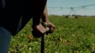 Agricultura rega farm