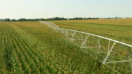 AERIAL Agricultural irrigation system in the field