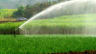 Agricultural Sprinkler