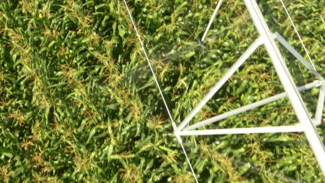 AERIAL Agricultural sprinklers watering a field