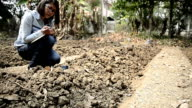 agriculture academic testing pH on soil for planting