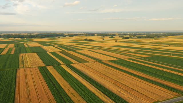 AERIAL Agriculture countryside