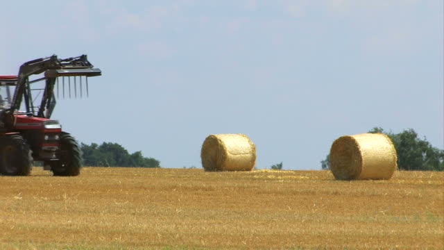 agriculture - field and tractor