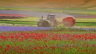 Landwirtschaft in Italien