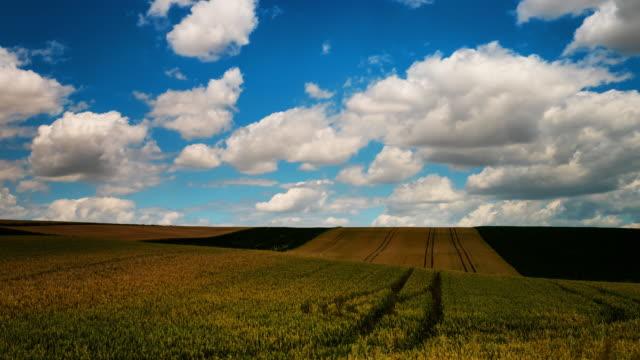 Agriculture Landscape Time Lapse (4k Resolution)
