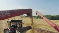 Agriculture works: summer countryside in Italy