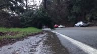 Agua Dulce CA Tree down blocking the roadway in Agua Dulce inside the Angeles National Forest CHP and LACOFD blocked roadway for 30 minutes while...