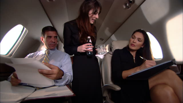 MS Air hostess serving businesspeople on private jet