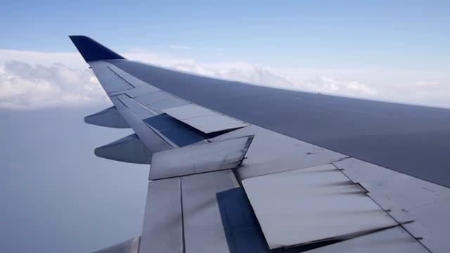 Flugzeug Flügel