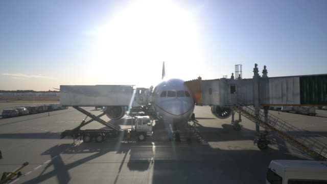 Airplanes parked at the airport