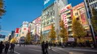 T/L WS Akihabara Electric Town / Tokyo, Japan