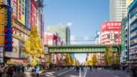 T/L WS PAN Akihabara Electric Town / Tokyo, Japan