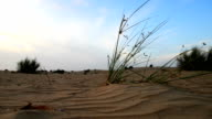 Al Sahra desert in Dubai district