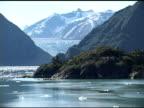 Alaskan Fjord and Glacier