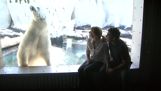 Ali Fedotowsky and Roberto Martinez at the Ali Fedotowsky celebrates her 26th Birthday at SeaWorld at San Diego CA