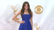 Allison Williams at 65th Annual Primetime Emmy Awards Arrivals on 9/22/2013 in Los Angeles CA