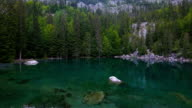 Alpine Lac Vert in Passy, looking at chamonix France