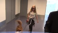 Amanda Seyfried her dog departing at LAX Airport in Celebrity Sightings in Los Angeles