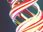 SLO MO T/L CU CGI Amaryllis forming swirl pattern