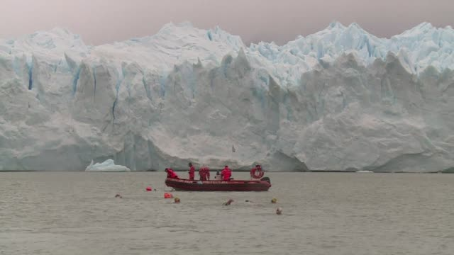 Amateur swimmers tread the freezing waters of the Perito Moreno glacier as part of Argentinas first International Winter Swimming Festival