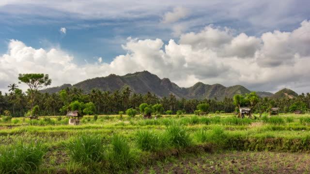 Fantastico bellissimo panorama di nuvole time-lapse con nuvole e fattoria rurale campi in tropicale di Bali, in Indonesia, in massima qualità (4 k UHD e HD)-Video Stock
