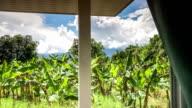 """""""Wunderbares Thailand Wetter Monsun-HD Zeitraffer"""""""