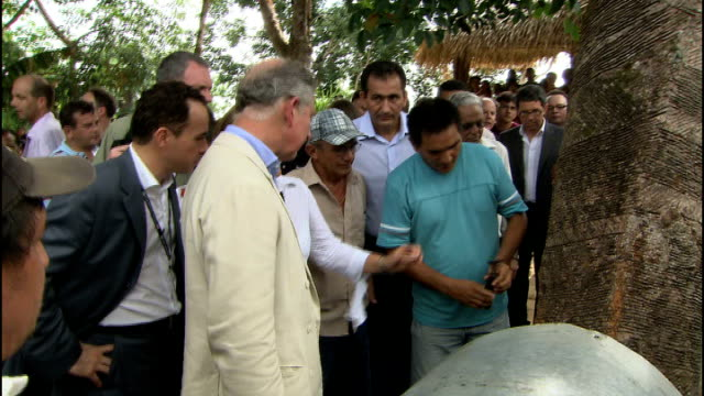 Prince Charles visit to Maguari Community Various shots Prince Charles being shown by local men how rubber fluid is collected from cut grooves in...