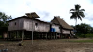 Amazonian daily life.