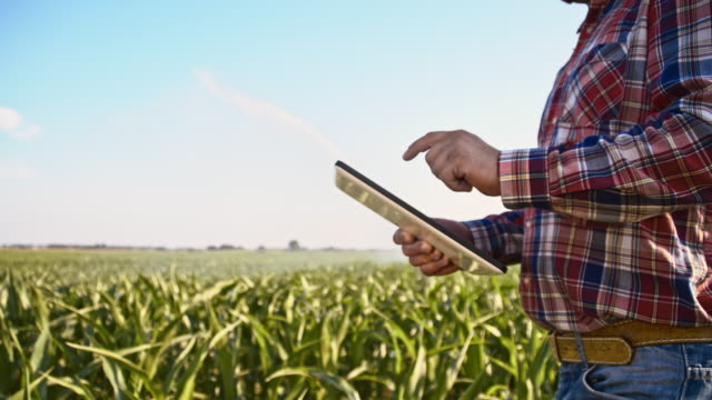 SLO MO American farmer working with a tablet