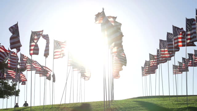 American flags waving in the wind