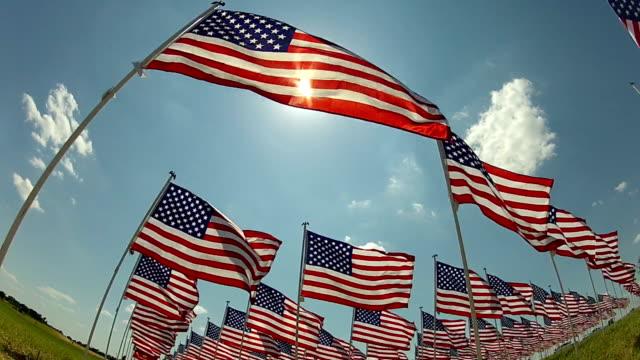 Bandiera americana sventolare al vento