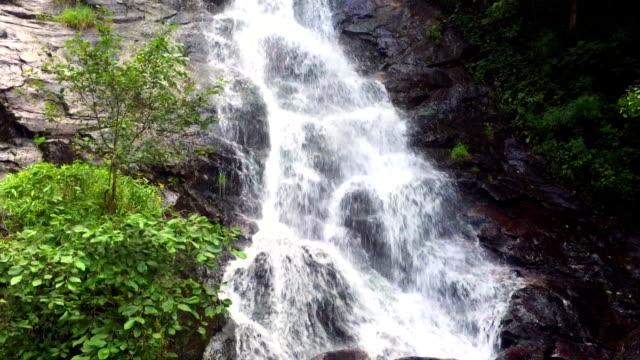 Amicalola Falls Close Up View